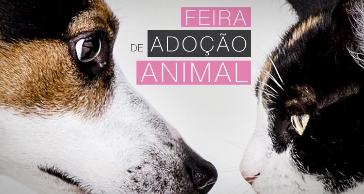 Quinta da Ribafria recebe Feira de Adoção Animal
