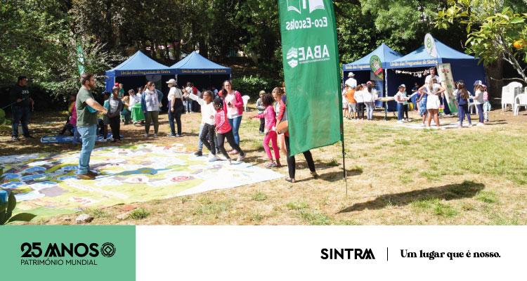 Candidaturas para a 2.ª edição da SintrAmbiente'20 – Feira do Ambiente e Sustentabilidade