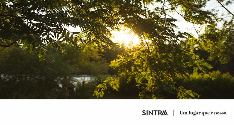 Jardim de Sintra em Homenagem a Gonçalo Ribeiro Telles