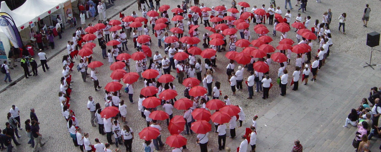 Câmara Municipal de Sintra comemora o Dia Mundial do Coração com uma caminhada